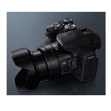 Panasonic Fotocamera digitale Bridge - DMC-FZ300EGK