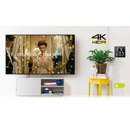 """PANASONIC TV LED 49"""" Ultra HD - TX-49EX603E"""