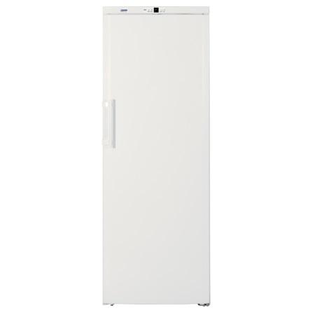 Liebherr Congelatore verticale no frost - Gn 4113
