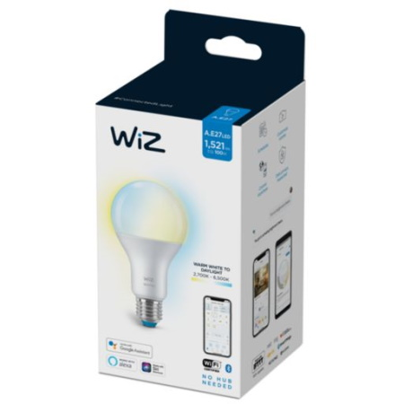 Philips Wiz Semplice plug and play - 78617500